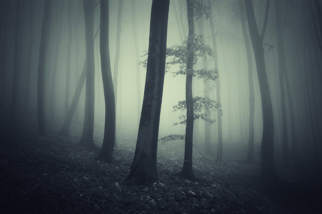 Eerie Scene