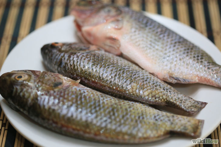Best Serve of Health and Nutrition with Fresh Fish as Good Breakfast Food