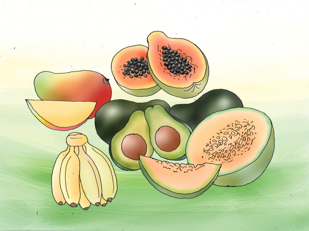 Healthy Fruit of Papaya also Avocado again Banana To Help How To Get A Flat Stomach