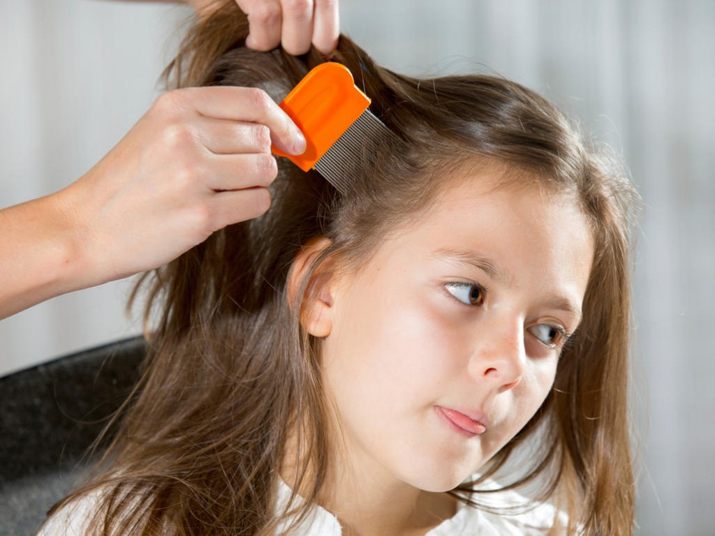 Simple Ways about How To Get Rid Of Lice for Children By Using Very Small Comb