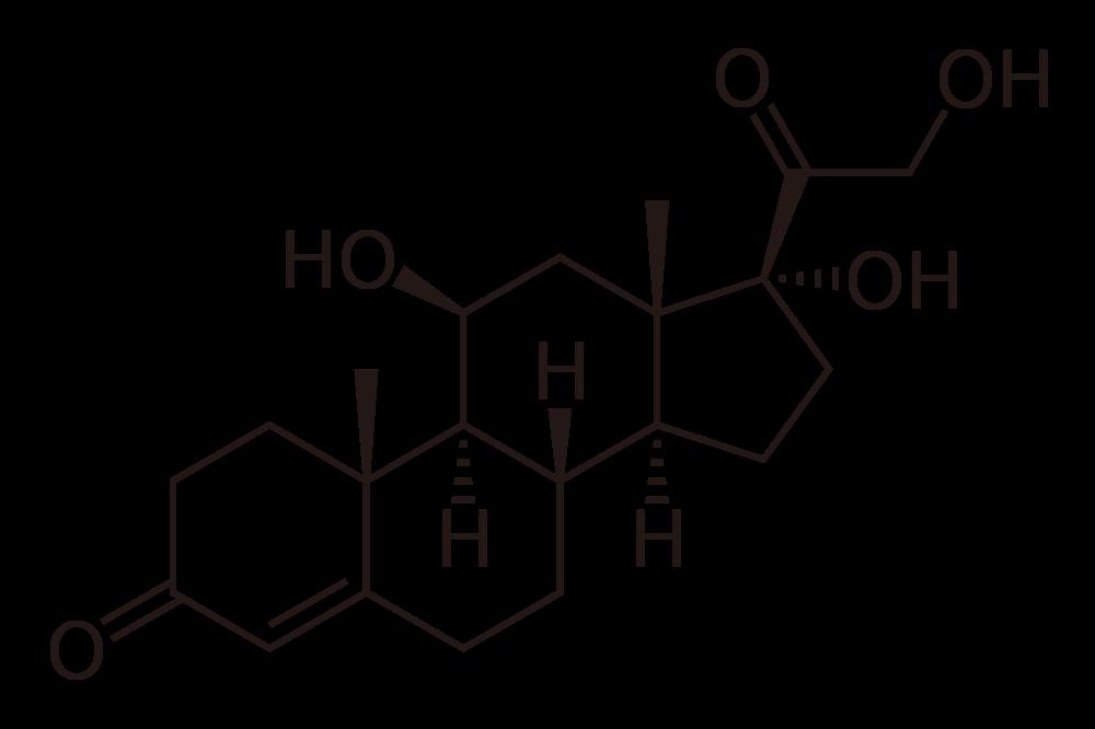 cortisolhormone2